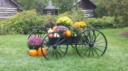 Fall Wagon at the Farm Petting Zoo and Living Historic Museum in Door County, WI
