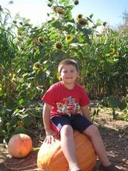 Fall Family Fun and Pumpkins at the Farm in Door County, WI